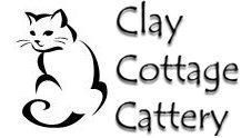 Catteries Norfolk at Clay Cottage Cattery | Watton Dereham Attleborough Wymondham Suffolk